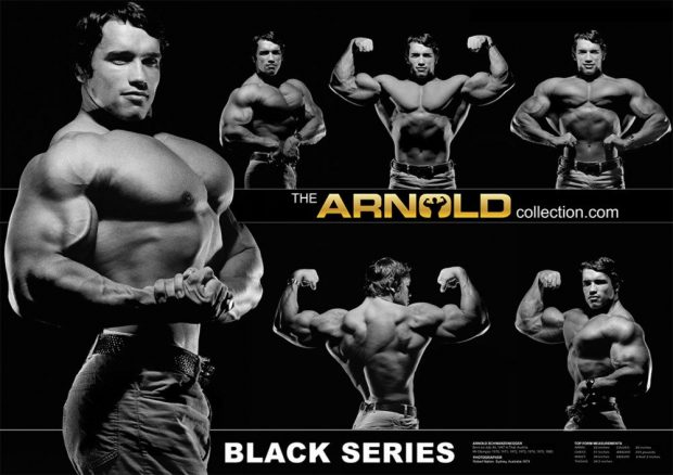 black_series-arnold-schwarzenegger_1024x1024